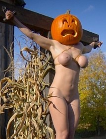 Pumpkin beauty tortured